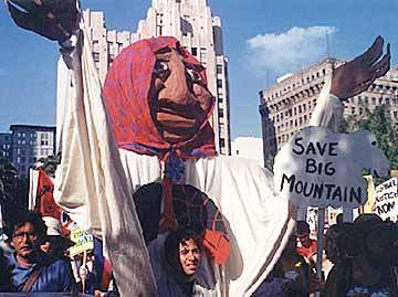 SAVE BIG MOUNTAIN (P...