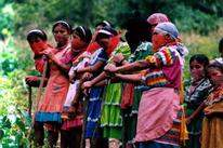 Amador Mujeres Graph...
