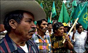 Mexican farmers prot...