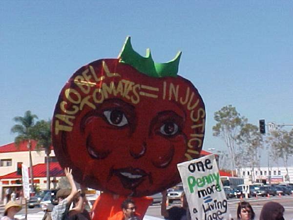 Tomato Head Sign...