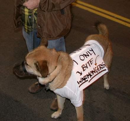 Nice doggie, good do...