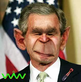Monkey Bomber...