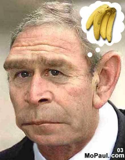 pResident of the Ape...