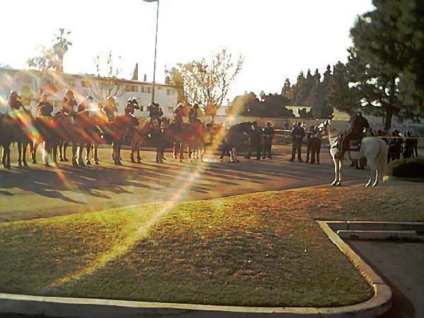 Garden Grove Police ...