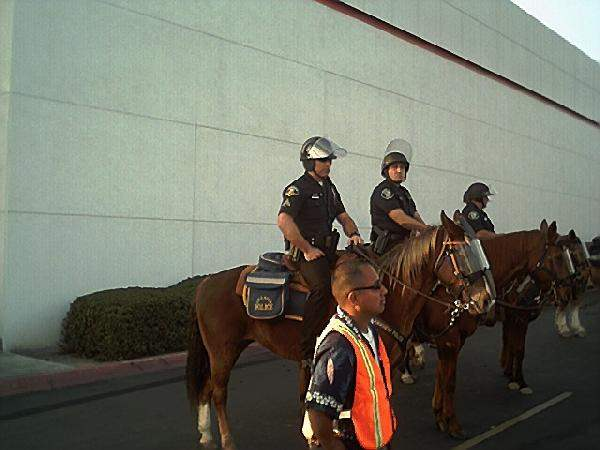 Mounted horse patrol...