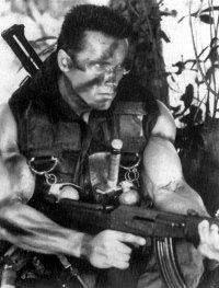 Schwarzenegger Provo...