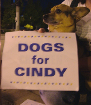 Dogs For Cindy...