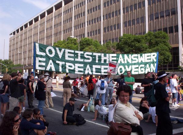Vegan Banner...