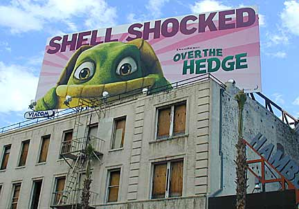 SHELL SHOCKED!...