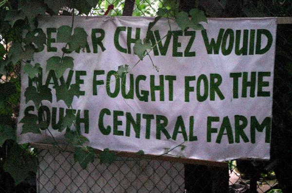 Cesar Chavez would h...
