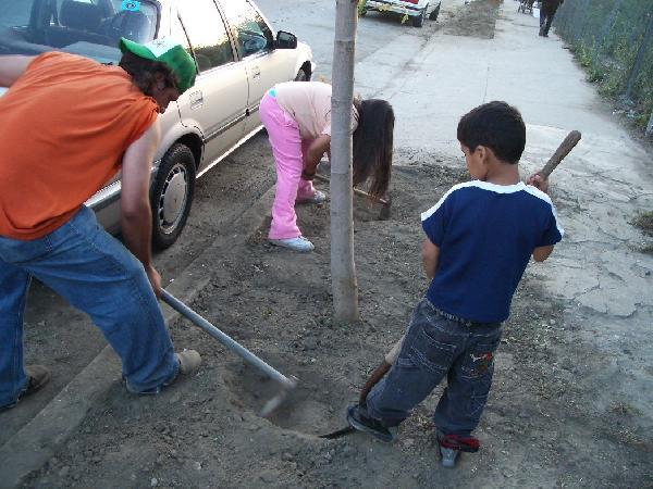 kids loosening soil...