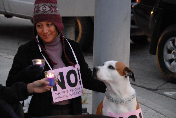 Dog Says NO to Escal...