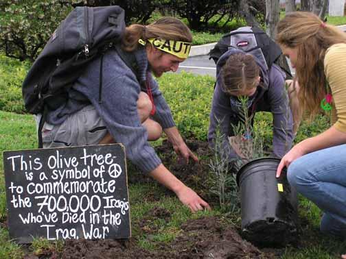 Peace Tree Planting...