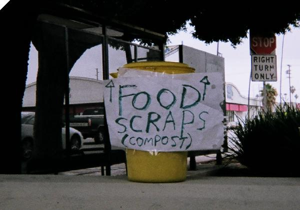 Food scaps here, ple...