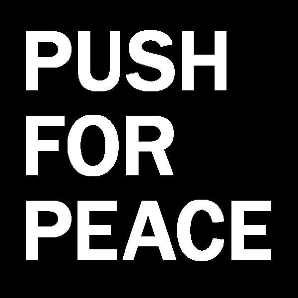 PUSH FOR PEACE stick...