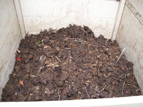 Compost bin cont'd...