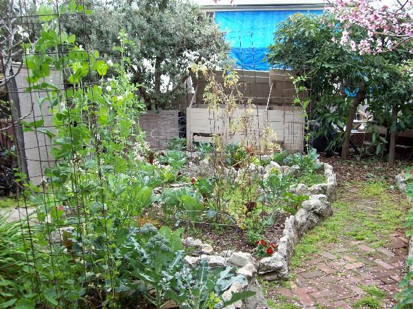 Eco-Home garden...