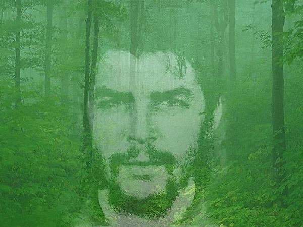 Che Guevara, donde n...