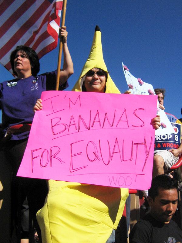 November 8: Bananas ...
