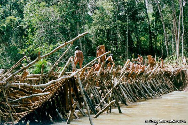 Amazon tribe's u...