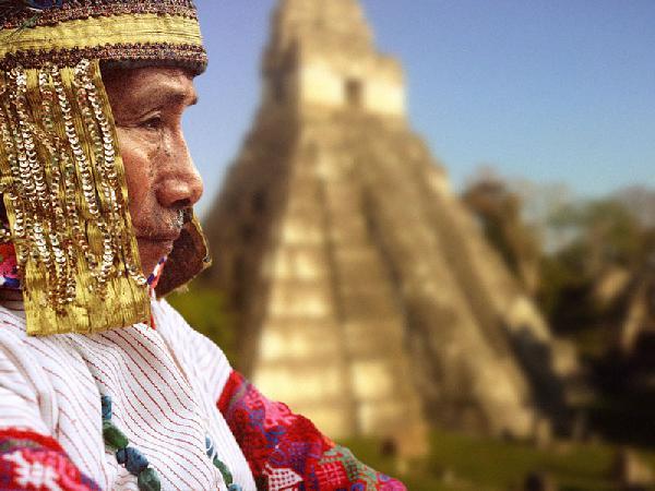 The Maya Grand Elder...