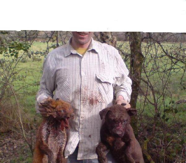 Urgent Animal Cruelt...