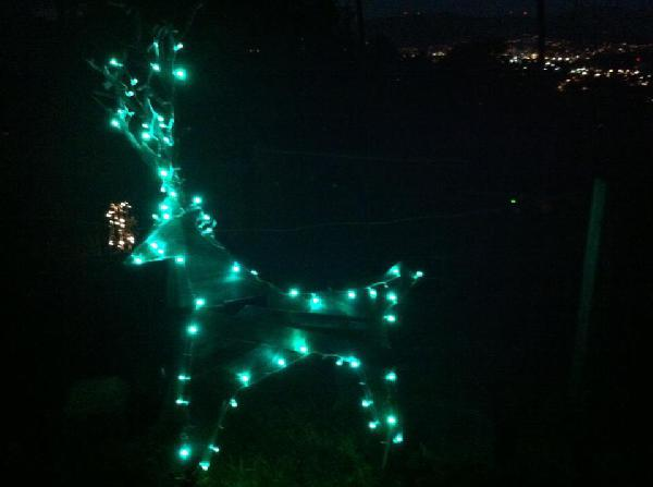 Solar-Powered Xmas L...