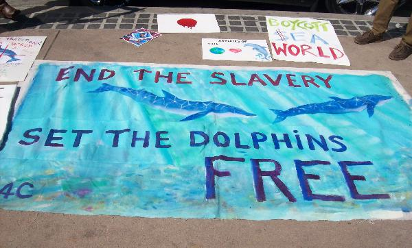 Leave dolphins free,...