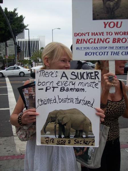 Activist at Ringling...