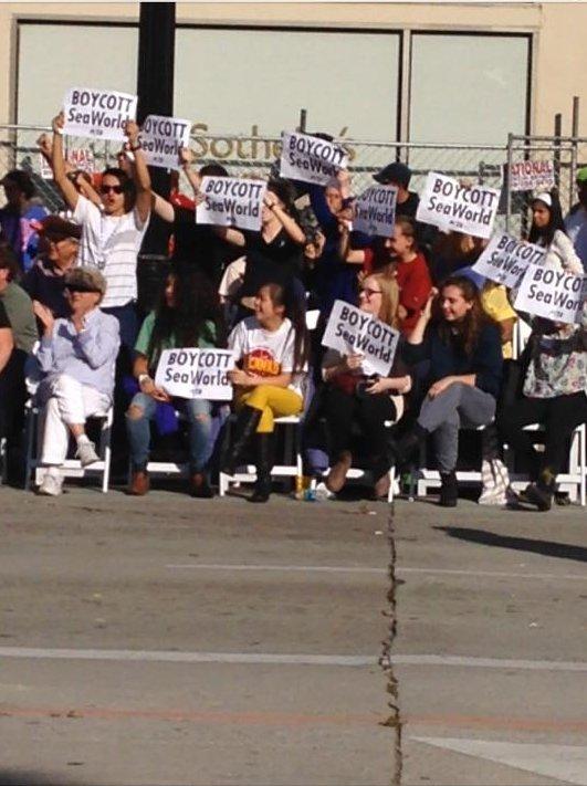 Protesting the Sea W...