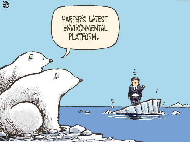 The oilpolluting sea...