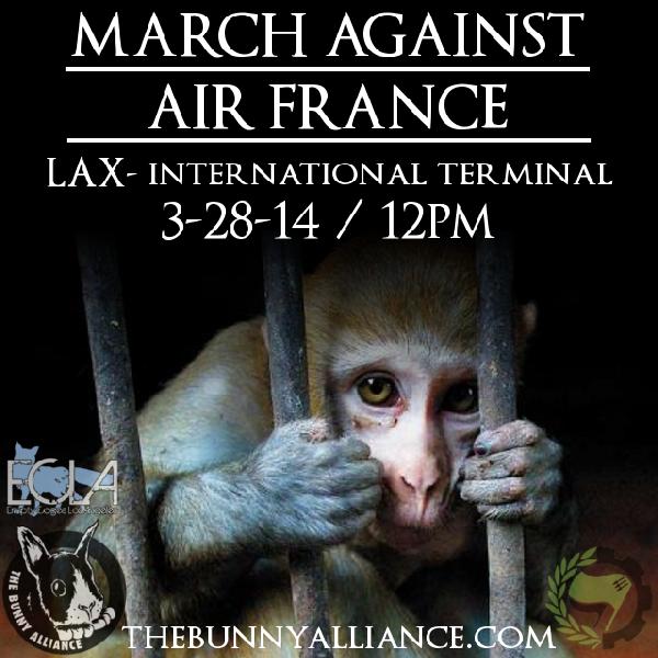 March Against Air Fr...