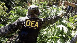 "Petition - Obama:Fire DEA Head Chuck Rosenberg for Calling Medical Marijuana a ""Joke."""