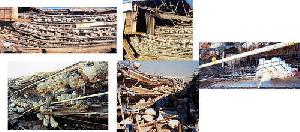 In 2000, A Tornado Hit Ohio Factory Farm.. Hundreds Of Thousands Of Chickens Bulldozed