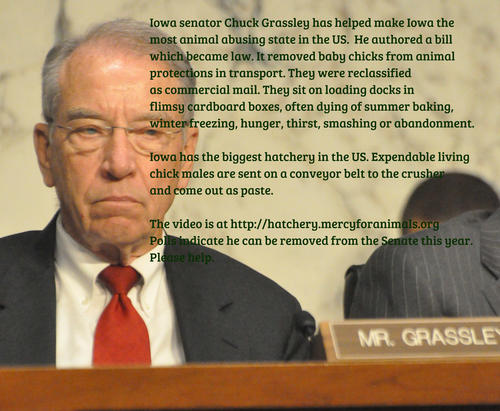 Chuck Grassley And S...