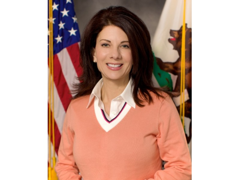 Assemblywoman Meliss...