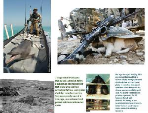 53 Of The Ways The World's Military Harm Animals