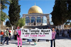 Code Pink on the temple Mount