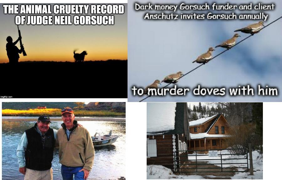 The Animal Cruelty ...