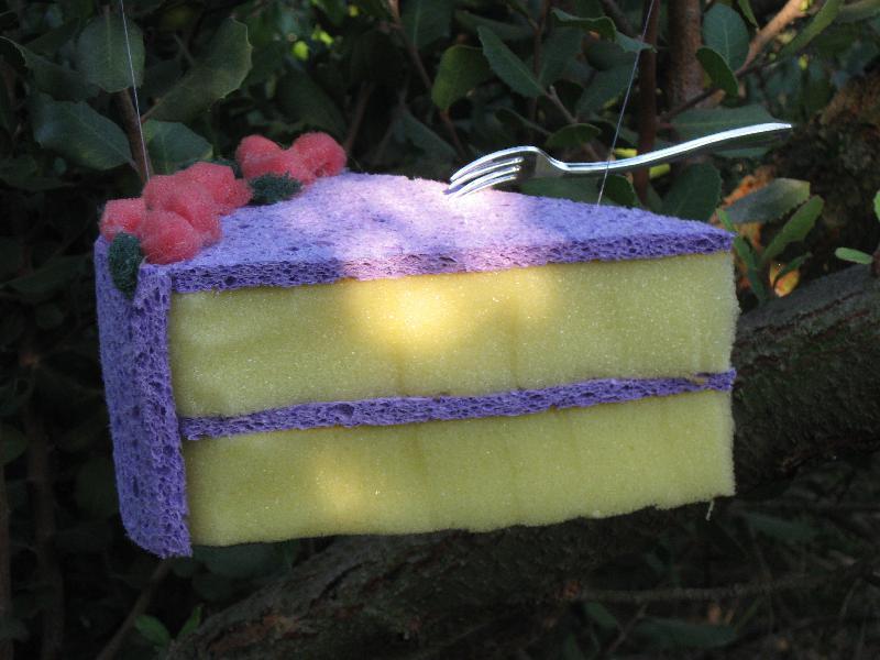 Sponge cake...